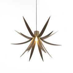 Iris Pendant Light  By Alex MacMaster & Limahl Asmall