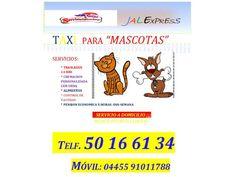 TAXI-MASCOTAS  SERVICIO ENVOS D.F MEXICO - http://Reventas.com.mx - Anuncios clasificados Gratis