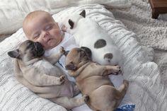 Baby human sleeps next to baby pugs! - Imgur