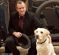 Rivals: Roly, pictured here with Hugh Bonneville, has been hounded out by Highclere's resident labradors
