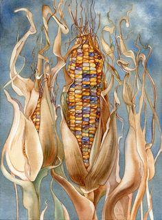 Картинки по запросу кукуруза акварель