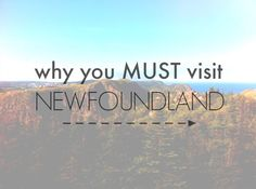 Newfoundland is a unique visit. With craggy coast that juts out and falls away into the waves of the frigid Atlantic, here are a few reasons to go NOW. Visit Canada, O Canada, Canada Travel, Alberta Canada, East Coast Travel, East Coast Road Trip, Newfoundland Canada, Newfoundland And Labrador, Honeymoon Planning