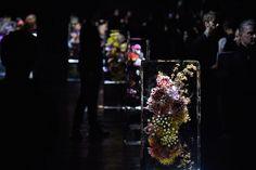 O artista-florista Azuma Makoto , que criou os blocos de flores congeladas no desfile de Dries Van Noten, está com viagem marcada ao Brasil para o início do ano que vem. Makoto fará uma exposição na Japan House, projeto global (e incrível) do governo japonês, que escolheu São Paulo, Los Angeles e Londres para construir uma espécie de embaixada do Japão contemporâneo, combinando arte, tecnologia e negócios. O prédio na avenida Paulista tem projeto do arquiteto Kengo Kuma e inaugura em março…