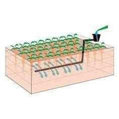 Raised bed irrigation system - All About Garden Backyard Vegetable Gardens, Outdoor Gardens, Raised Garden Beds Irrigation, Pallets Garden, Orchid Care, Diy Garden Decor, Water Garden, Raised Beds, Permaculture