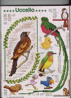 Padrões de ponto cruz gratuitos para todos: PETS Esquemas....great assortment of birds !