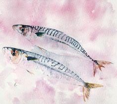 Sardines - watercolour