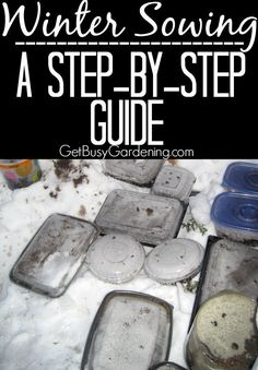 If you've been meaning to try winter sowing seeds, what's stopping you? It's not as scary as it sounds. Start by reading this... Winter Sowing - A Step By Step Guide | GetBusyGardening.com