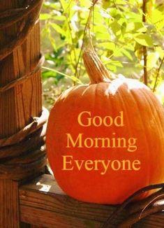 Good Morning Everyone, Autumn, Fall, Pumpkin Carving, Seasons, Vegetables, Fall Season, Fall Season, Seasons Of The Year