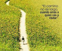 el camino largo