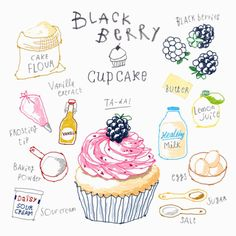 Blackberry cupcake Illustration _ 한입에 냠 ! _