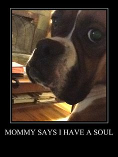 """You bet you do """"Dolly""""!!!"""