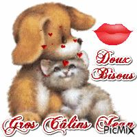 Calin Gif, Bisous Gif, Tu Me Manques, Animals And Pets, Teddy Bear, Clip Art, Kawaii, Marie Claire, Allah