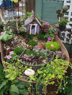 Fairy Gardens - I'm now obsessed.