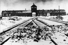 27 janvier 1945: lespremières images delalibération d'Auschwitz