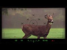 Viewfinder Template 4K & FHD || Videohive - YouTube