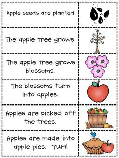 preschool to pre-k E
