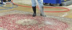 Reason Why You Should Take Professional Rug Cleaning Service