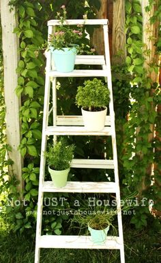 This is a great idea if you don't have a lot of space. I'm dying to use it for an outdoor/balcony herb garden!