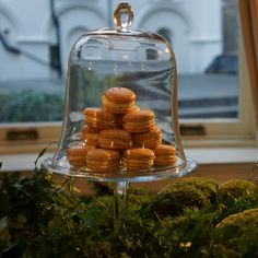 Pierre Hermé's new 2013 LesJardins collection of macaron by @Chris Osburn