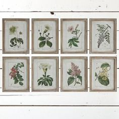 vintage style framed flower wall art set of 8