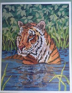 Water Tiger Needlepoint Kit Picture Candamar 1986 Something Special 11 x 14 #CandamarDesigns