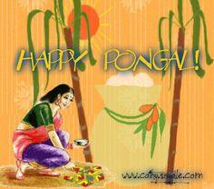 about pongal festival essay
