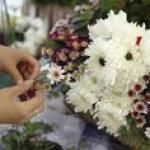 Video Instructions For Making Dog Flowers – Fun Floral Arrangements In The Shape Of Dogs