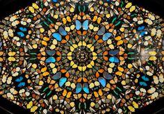 ccf6bd5fa1e4 Les 43 meilleures images du tableau DAMIEN HIRST sur Pinterest   Art ...