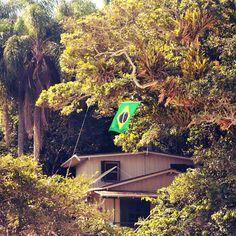 Fotografando Santa Catarina: ...Gigante pela própria natureza...