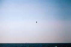 The Sea Sea, Celestial, Explore, Photography, Outdoor, Outdoors, Photograph, Fotografie, The Ocean