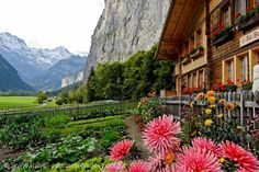 Alps of Switzerland!! The Hills Are Alive With the Sound of Music!!