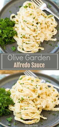 This Olive Garden Alfredo sauce recipe comes straight from the restaurant itself! It takes just 15 minutes to make, and pairs perfectly with fettuccine. | The Cozy Cook | #pasta #italianfood #olivegarden #alfredosauce #comfortfood #fettuccine #copycatrecipe #meatless