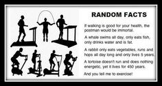 Funny random facts about exercise - http://jokideo.com/funny-random-facts-about-exercise/