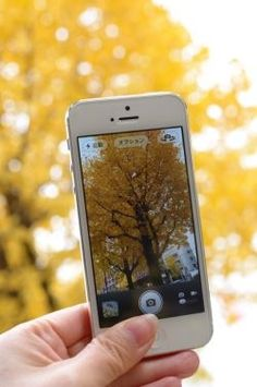 With all the advancements in the iPhone camera, it's no wonder that iPhoneography has become the preferred means of capturing digital images....