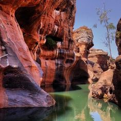 Cobbold Gorge has spectacular 30 metre high cliffs on either side, North Queensland Perth, Brisbane, Melbourne, Sydney, Outback Australia, Queensland Australia, Australia Travel, Billabong, Travel Goals