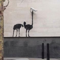 Banksy Are you looking for one? Join b-uncut, the Art Exchange and find a business ! art.blurgroup.com