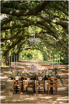 Spring Inspiration | Oak Hollow Farm, Fairhope, AL » Amy Little Photography