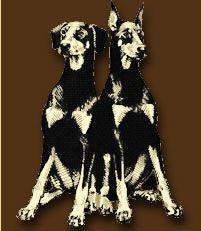 Doberman Rescue, Doberman Pinscher, Kinds Of Dogs, Dog Days, Ohio, Dobermans, Pets, Animals, Happy