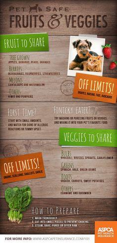 Pet safe fruits and vegetables