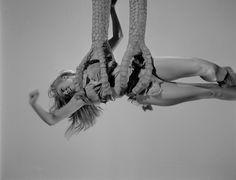 The work of legendary creature creator Ray Harryhausen in ONE MILLION YEARS BC! Raquel Welch