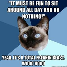 """It must be fun to sit around all day and do nothing!"" Yeah, it's a total freakin' blast. Wooo hooo."