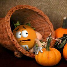 Orange M & M in cornucopia Peanut Butter M&ms, Peanut M&ms, Yellow M&m, Blue, M&m Characters, M Wallpaper, House Of M, M M Candy, Favorite Candy
