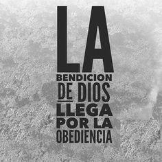 La obediencia a su palabra