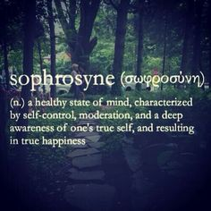 Sophrosyne (n.) A Healthy State Of Mind, Characterized By Self Control, Moderation, And A Deep Awareness Of One's True Self, And Resulting In True Happiness