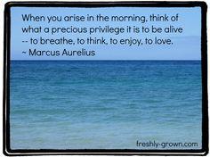 Life is a Privilege | Freshly Grown