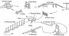 agility dog equipment - Google Search