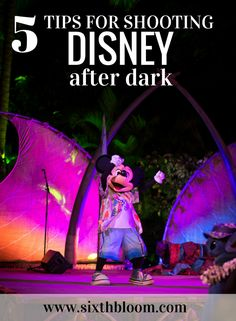 5 Tips on Shooting Disney After Dark, Photography Tips, photography Tutorials