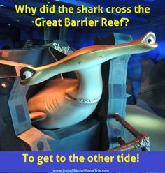 """Shark Joke: Why did the shark cross the Great Barrier Reef? --- To get to the other tide! / You can find this statue of """"Anchor"""", the Hammerhead Shark from """"Finding Nemo"""" in the Seas with Nemo and Friends pavilion at Epcot. Classic Disney Characters, Disney Pixar Movies, Disney Jokes, Disney Nerd, Disney World Facts, Disney Facts, Shark Jokes, Epcot Attractions"""