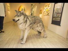 WOLF IN SHINJUKU GANKA GAROU - YouTube