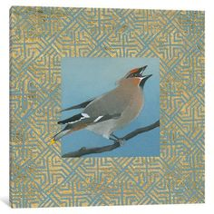 "World Menagerie Cedar Waxwing Border Graphic Art on Wrapped Canvas Size: 26"" H x 26"" W x 1.5"" D"